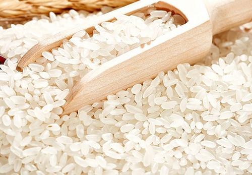 绥化大米 | 添丰米业介绍粳米的特点